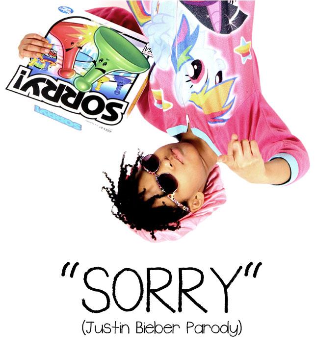 Justin Bieber Sorry Parody