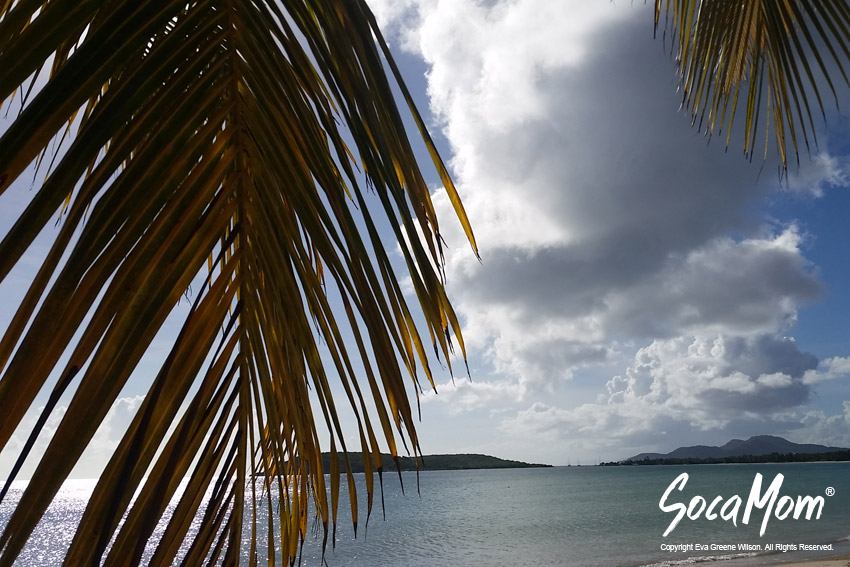 BEACHES IN VIEQUES