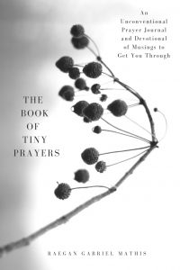 The Book of Tiny Prayers by Raegan Mathis