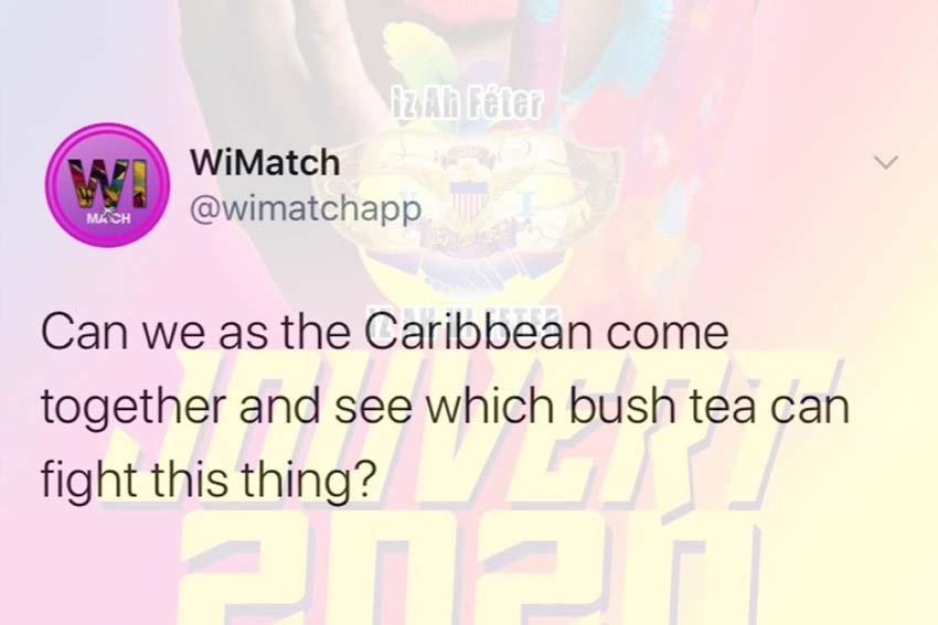 Bush tea meme. Can we see which bush tea can fight coronavirus?